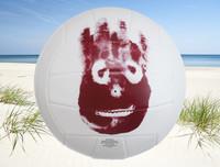Mr Wilson Volleyball