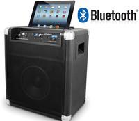 ION Block Rocker Bluetooth IPA56/IPA66